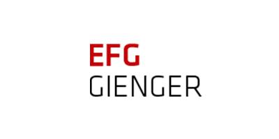 Elektro Brummer Logo EFG